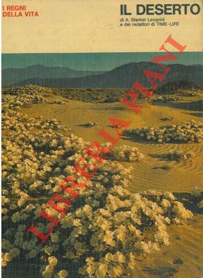 Il deserto.