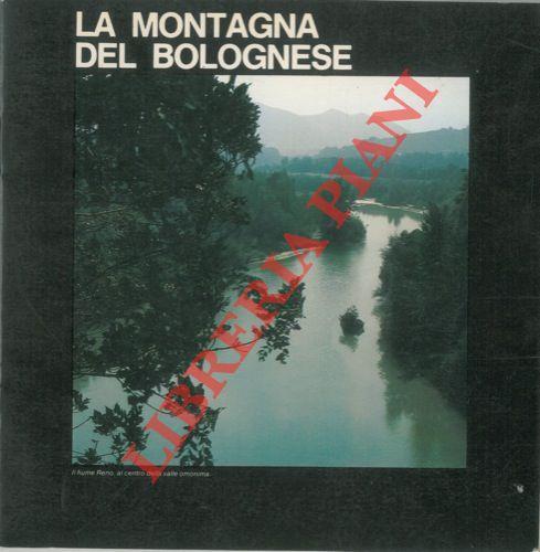 La montagna del bolognese tra le valli del Samoggia e dell'Idice.