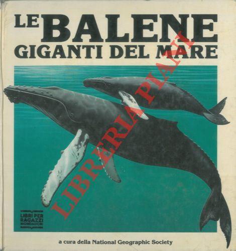 Le balene giganti del mare.
