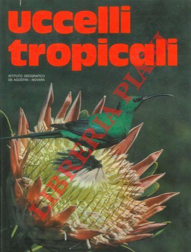 Uccelli tropicali.