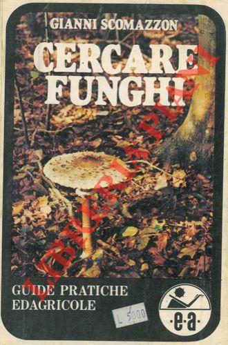 Cercare funghi.
