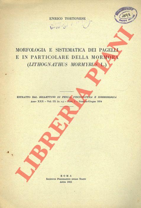 Morfologia e sistematica dei pagelli e in particolare della Mormora (Lithognathus mormyrus L.)