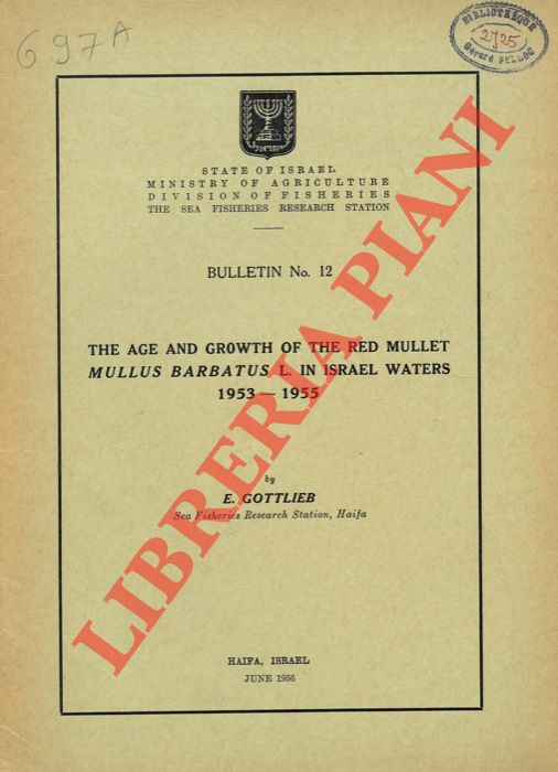 The age and growth of the Red mullet Mullus barbatus L. in Israel waters 1953 - 1955.