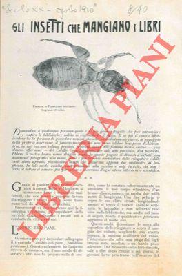 Gli insetti che mangiano i libri.