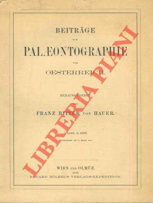 Beitrage zur Palaeontographie von Oesterreich.